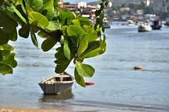 Verão... (Ruby Ferreira ®) Tags: baía bay amendoeira dof barcos boats