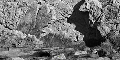 BACK TO THE ANTHROPOCENE (LUMINA TERRIS) Tags: geology sandstone unconformity sedimentary flysch turbidites getxo bizkaia basquecantabrianbassin cenozoic lutetian gold