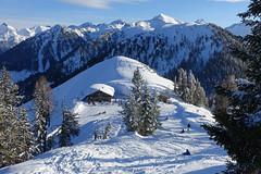 Hochwurzen, Schladminger Tauern (www.textbox.at) Tags: winter berge alpen österreich schladming hochwurzen rodelbahn tauern sonnig hütte berghütte freizeit skiamadé