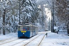 P-Zug 2005/3005 im winterlichen Grünwald zwischen den Haltestellen Parkplatz und Robert-Koch-Straße (Frederik Buchleitner) Tags: 2005 3004 fahrschule grünwald liniee munich münchen pwagen schnee strasenbahn streetcar tram trambahn