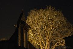 Voie lactée_1621 (Luc Barré) Tags: platane arbre tree moon ligth ciel étoile étoiles estampon landes soir france losse bois pelouse forêt personnes sur la photo
