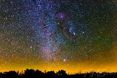 Orion on the Horizon (Troy A. Snead) Tags: astrophotography astronomy astroscape orionmolecularcloudcomplex barnardsloop orionsbelt coudersportpa cherryspringsstatepark stargazing starrynight longexposure nightphotography stars astrophotos