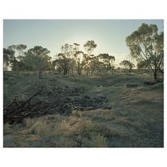QFV-23 (sm0r0ms) Tags: mamiya7 6x7 kodak 120 film analog landscape mediumformat colorphotography newtopographics contemporarylandscape