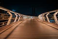 愛河之星 | 高雄Kaohsiung (ibgsaker) Tags: kaohsiung taiwan bridge design night canon