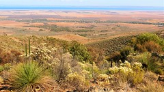 View across Spencer Gulf, Bridle Trail, Southern Flinders, South Australia (Red Nomad OZ) Tags: bridletrail landscape nature natural outdoor scenery southaustralia australia farm farmland agriculture grasstree southernflindersranges flinders flindersranges spencergulf