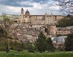 Urbino (Jolivillage) Tags: jolivillage village borgo città marche marches italie italy italia europe europa urbino picturesque geotagged