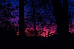 Evening Layers