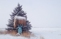 Morning Workout ? (Mr. Happy Face - Peace :)) Tags: woman rottoballe hay art chuckle pose winter canada albertabound funpic dress longhair brunette farmwoman strong smile laugh funny artforfun cowtown yyc snow snowing scenery landscape haybale lifting