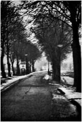 Onderdendam (Schnarp) Tags: onderdendam groningen zwartwit blackandwhite noir nordic nordicnoirholland nederland niederlande holland paysbas netherlands europe europa pentaxk10d edited bewerkt photoshop photoshopcc hdr filter