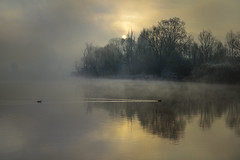 Emotion (Eros Penatti) Tags: adda addariver fiume river airuno fog nebbia emotion lombardia italia