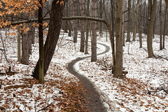 Sinuous Path (BRB1952) Tags: michigan mayburystatepark