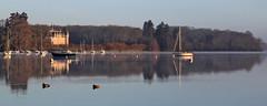 Canards (rogermarcel) Tags: river rivière boats bateaux duck canard château castle brume mist sunrise panorama panoramic rogermarcel landscape waterscape paysage