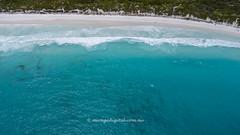 The beach_0671