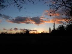 Perivale sunset (John Steedman) Tags: perivale sunset london uk unitedkingdom england イングランド 英格兰 greatbritain grandebretagne grossbritannien 大不列顛島 グレートブリテン島 英國 イギリス ロンドン 伦敦
