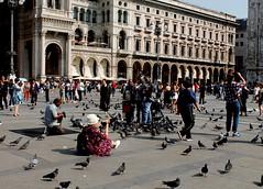 Fotografare.......che passione!!!! (dona(bluesea)) Tags: fotografi photographers passione passion duomo piazzaduomo milano italia italy