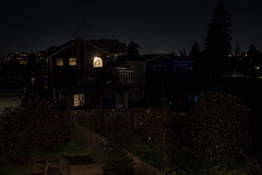 Back garden at night (Travels with Kathleen) Tags: california bayarea night houses light albanyca outdoor yards gardens