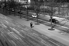 Along the avenue (pascalcolin1) Tags: paris13 bnf homme man lignes lines avenue arbres trees voitures cars seine marches steps photoderue streetview urbanarte noiretblanc blackandwhite photopascalcolin 50mm canon50mm canon
