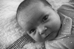 (patrickjoust) Tags: sony a7 digital camera manual focus lens domestic home kid child patrick joust patrickjoust baltimore maryland md usa us united states north america estados unidos black white bw blancetnoir blancoynegro schwarzundweiss geneva baby girl newborn bed looking