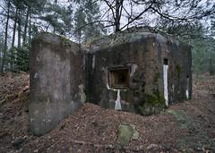 Schöber-Linie (david_drei) Tags: befestigungslinie lostplace abandoned decay bunk bunker