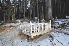 goldrushcem003 (i threw a guitar at him.) Tags: alaska abandoned grave yard cemetery 2019 winter gold rush outside outdoor klondike location historic history
