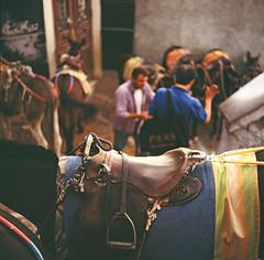 Donkey (samorodovs) Tags: 6x6 греция hasselblad санторини santorini greece donkey film 160nc kodakportra portra