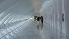 Calatrava Art Museum Milwaukee Wisconsin (MalaneyStuff) Tags: milwaukee usa calatrava floor art museum 2018 35mm nikon d7100 wish wisconsin