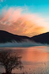 Alba (DarioMarulli) Tags: abruzzo alberi allaperto albero lago laquila landscape campotosto alba sunset