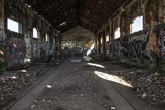 Cuando desaparece el tren (helenabalbas) Tags: tren abandonado abandoned otoño auton viejo old olvidado nikon d5600 dia day graffiti pintadas colores sol sun boy chico techo rocho estacion ruina