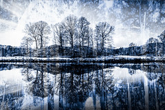 Winter blues (judi may) Tags: sliderssunday sliders trees lakedistrict elterwater lake blend reflections blues sky icm canon5d blue