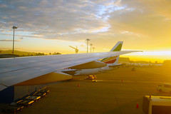Dusk in Ethiopia (murugakimani) Tags: ethiopia bole airport airplane aeroplane flight wing dusk travel tour landscape ethiopian airways