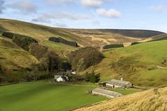 Whitendale (l4ts) Tags: landscape lancashire forestofbowland aonb whitendale farm moorland