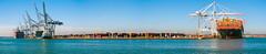 (Rui Nunеs) Tags: containers containership aljmeliyah tihama docks harbour cranes southampton solent water sea panorama wide fujifilms6500 uk unitedkingdom england hampshire