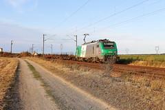 BB 27068 + divers (Thomas-60) Tags: bb27000 fret train sncf ferroviaire railway locomotive