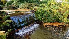 #Leverkusen     #FOTUGRAFCILIK     #Sonbaharrenkleri     #photography      #landscape    #Sony  a 77 V  #landscapephotography #Sonbaharrenkleri #FOTUGRAFCILIK #hdrphotography #sony #A #77V #SonyFOTUGRAFCILIK #photography #photo #photos #photographyeveryda (fu_lintkhac) Tags: photooftheday a color fotugrafcilik focus pic photos pictures moment sonyfotugrafcilik beautiful sony landscapephotography igshutterbugs composition photographylovers leverkusen photographer photographyeveryday hdrphotography instagood art sonbaharrenkleri photo capture instaphotography picoftheday mobilephotography allshots exposure light 77v photoart photography landscape snapshottimucinkaanhayatipiyitaracan09112014