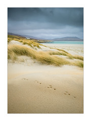 Evidence of life (Dave Fieldhouse Photography) Tags: scotland harris hebrides sand beach luskentyre island seascape dunes grasses footprints houses ocean mountains portrait outdoors landscape fuji fujixt2 fujifilm wwwdavefieldhousephotographycom spring