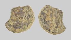 House of Constantine Contemporary Copy Nummus Constantinopolis 335-345 (2018) (Ks Ed) Tags: uk roman coin metal detecting detector norfolk england dug excavated ancient find 2018 relic nummus historical constantine constantinopolis