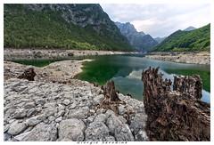 selva4 (Giorgio Serodine) Tags: goselva tramonti friuli canon sigma massi pietra tronco lago monti sponde panorama bosco alberi cielo