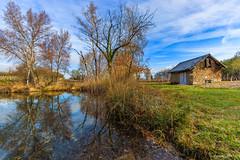 Au bord de l'étang (Savoie 04/2019) (gerardcarron) Tags: canon80d morning nature paysage savoie water printemps spring