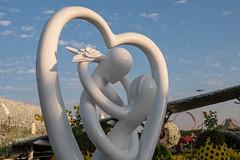 Cruise 2018 - 2019 (Marc Nollet) Tags: celebrity constellation uae dubai miraclegarden albarsha flowergarden flowers airbus a380 fuji fujifilm xt1 love