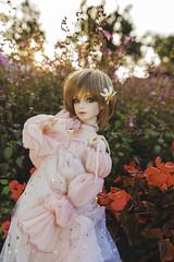 My Bonnie lass (Sugar Lokifer) Tags: oasisdoll bjd ball jointed doll resin sqlab hybrid