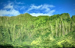 Green on green (kimbar/Thanks for 4 million views!) Tags: hawaii oahu green mountains