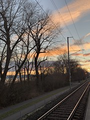 On the road (Nature is my passion) Tags: ontheroad unterwegs zug sonnenaufgang bäume bodensee morgen nature trees lake train morning sunrise