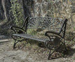 Huyendo del frío (pedroramfra91) Tags: exteriores outdoors jardín garden invierno winter