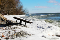 IMG_4562ehalfbench (Rebecca Evelynn) Tags: sky lakeontario benches chickadee barredowls naturephotography presquileprovincialpark waves crazyclouds ice ducks woodpeckers floating islands bigrock moss greenmoss