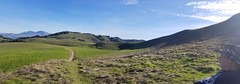 Briones 20190127 (thamiter) Tags: panorama briones ebparksok northerncalifornia contracostacounty eastbayhills regionalpark eprpd samsungs8 winter january 2019