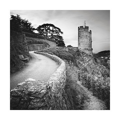 All Roads Lead Up (GlennDriver) Tags: black white bw mono france europe road path monochrome square nd trees bnw