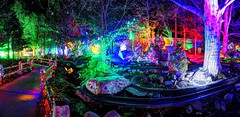 trains of lights (JoelDeluxe) Tags: rol riveroflights abq biopark nm december 2018 albuquerque biological park pnm light display colors lights sculptures fantasy newmexico hdr joeldeluxe