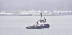 Rose MacKenzie (D70) Tags: rose mackenzie spiritofthenorth drydock tug boat boathouses on rainy day vancouver harbour