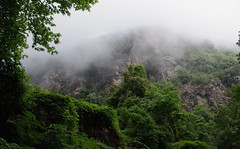 Misty mountain (Krystian38) Tags: mist fog mountains nature greece landscape green tree top20greece