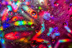 Neon (christos.tsiapalis) Tags: 365 unirally macro